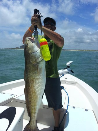 Daytona beach fishing charter new smyrna beach 2018 for Fishing charters daytona beach florida