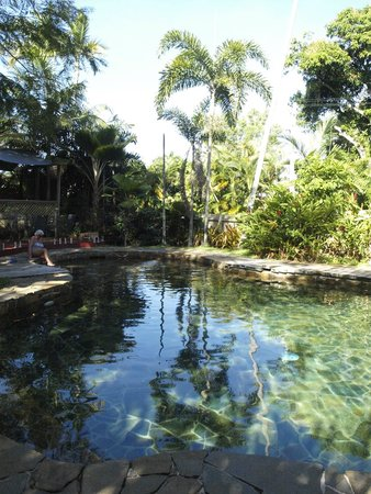 Castaways Resort & Spa Mission Beach: The view of the pool in the garden with Dining area