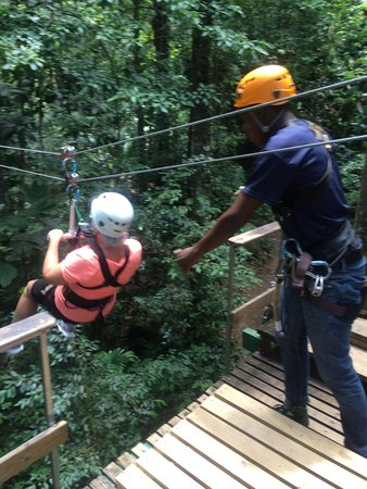 St. Lucia Rain Forest: Fun time zip lining through the rain forest! Guides made it extra fun!