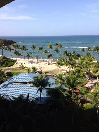 Hyatt Residence Club Dorado, Hacienda del Mar : Lovely vista from our balcony