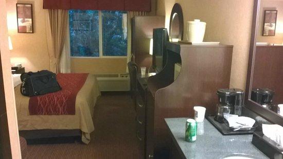 Comfort Inn Columbia Gorge: Cabinet for Fridge & Microwave, TV, Desk, & Wardrobe