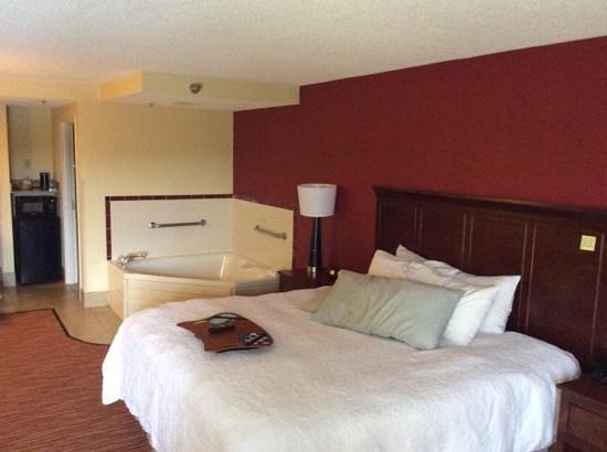 Hampton Inn Columbus-East: Big King Room With Jacuzzi!