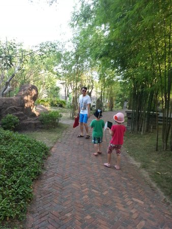 Sun Spa Resort Quang Binh Vietnam: Garden