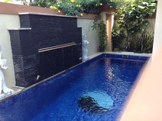 Heliconia Villas: the private pool