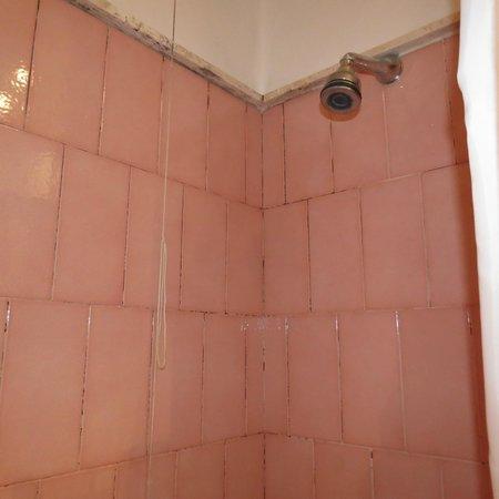 Hotel Alexandra : Shower