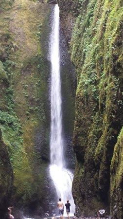 Oneonta Gorge: Amazing!!!