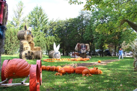 Howell Family Pumpkin Farm : Area before the admission gate