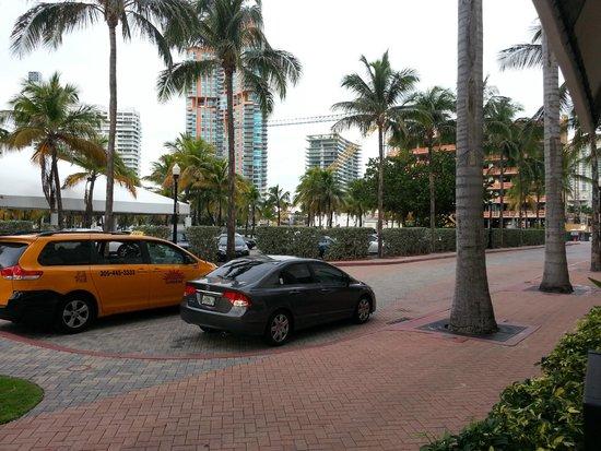 Hilton Bentley Miami South Beach Picture Of Hilton