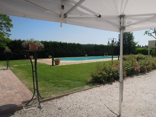 All'Angelo: Il parco e la piscina