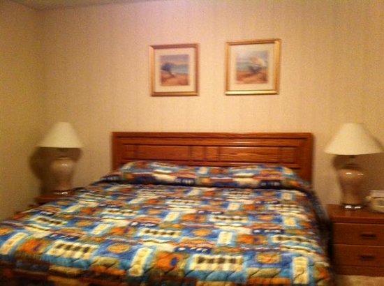 Grey Gull: Very good bed!  (#103)