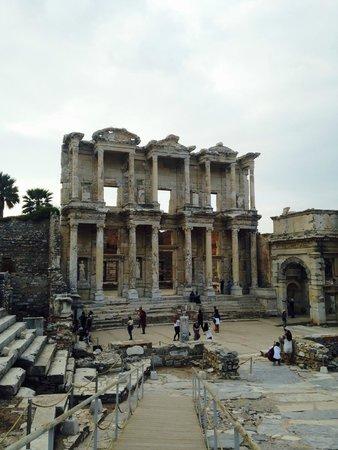 кошки - Picture of Ephesus Museum, Selcuk - TripAdvisor