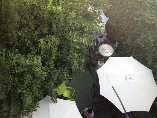 The Garden Backpacker : 屋上から見た裏庭