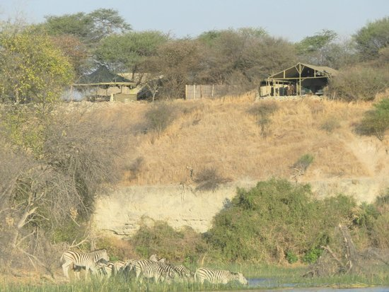 Meno a Kwena Tented Camp: View to the camp from the afternoon boat trip