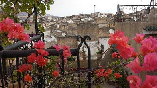 découverte de la Médina : terrasse Dar TAMO