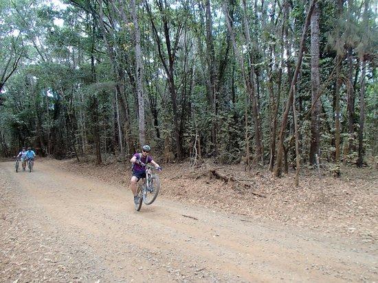 Bike N Hike Adventure Tours : a