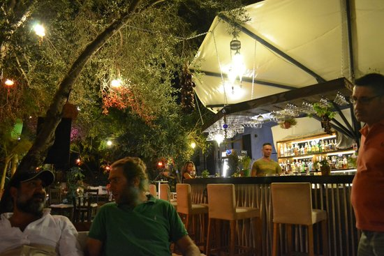 Beautiful Botanik Garden Bar: At The Bar