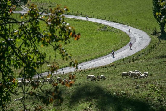 Ribnica na Pohorje, Словения: Biking trail