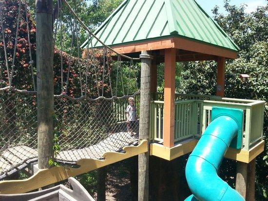 "Memphis Botanic Garden: ""The Big Backyard"""