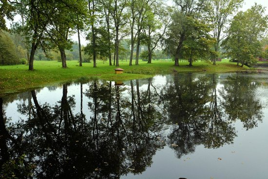 Old Sigulda Castle: 城址の中の池