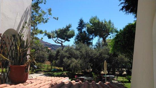Castello Apartments: Εξωτερικοί χώροι