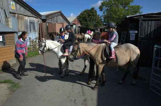 Moyfield Riding School
