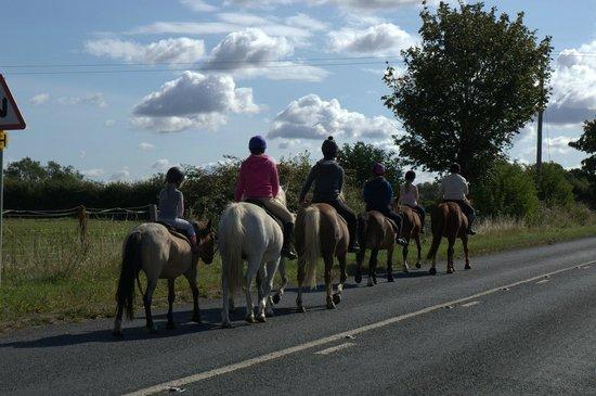 South Littleton, UK: Along the road on a lovely day