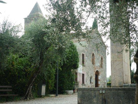 Chiesa di San Pietro in Mavino