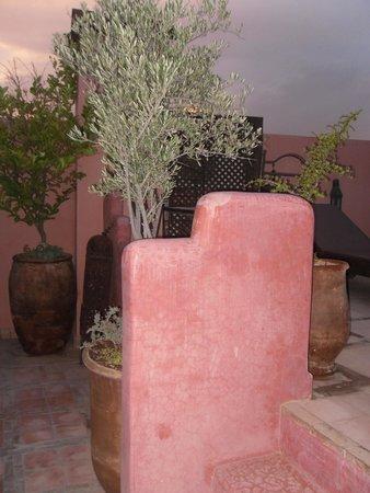 Riad Jonan: Roof terrace