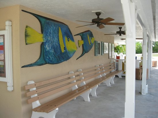 Liars bench picture of big pine key fishing lodge big for Big pine key fishing lodge big pine key fl