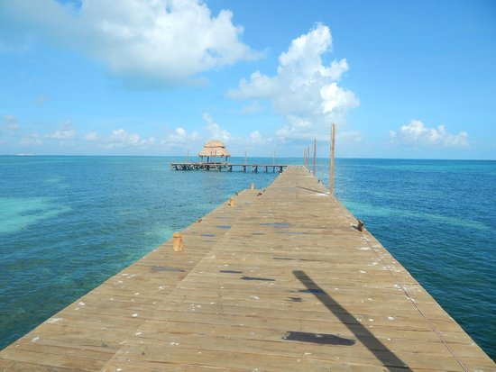 Mia Reef Isla Mujeres : New Dock and Palapa..... Great Snorkeling