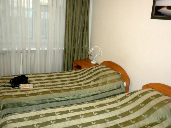 Volga Hotel : Room