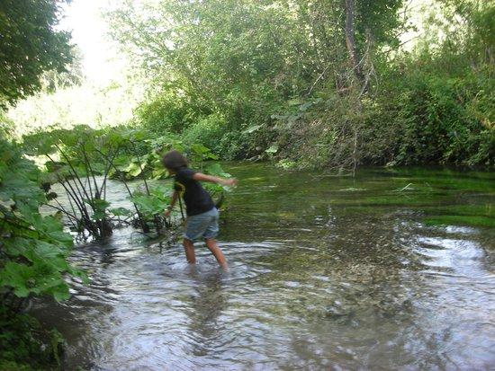 Agirturismo Le Belle Rane: Al fiume