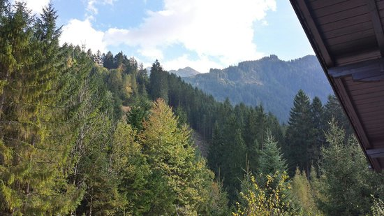 Alpin Hotel Garni Eder: Front patio view