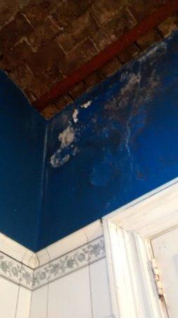 Terrazas Estoril: baño techo