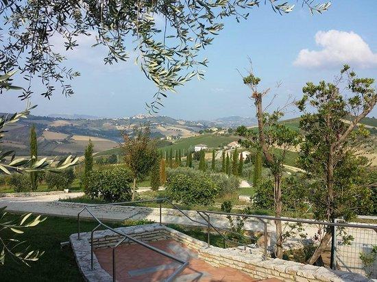 Agriturismo Fattoria Marchetti: il panorama