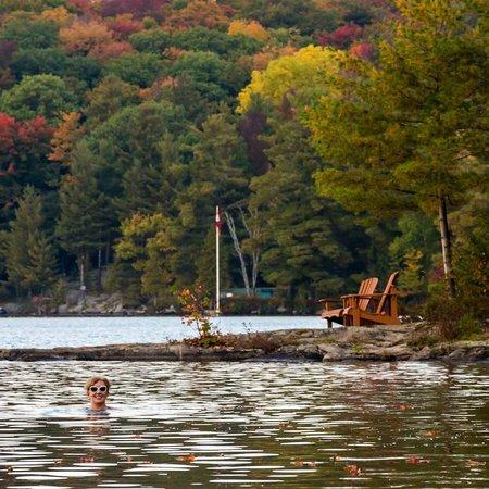 Sherwood Inn: Swimming in late September