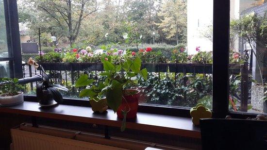 LANDMARK eco Hotel: view from breakfast
