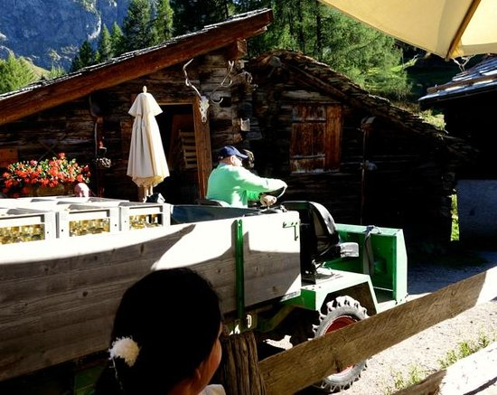 Restaurant Zum See : Max delivering the wine by tractor