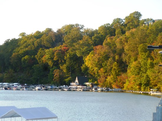 Museum of Geology and Natural History : View of Cheat Lake and marina