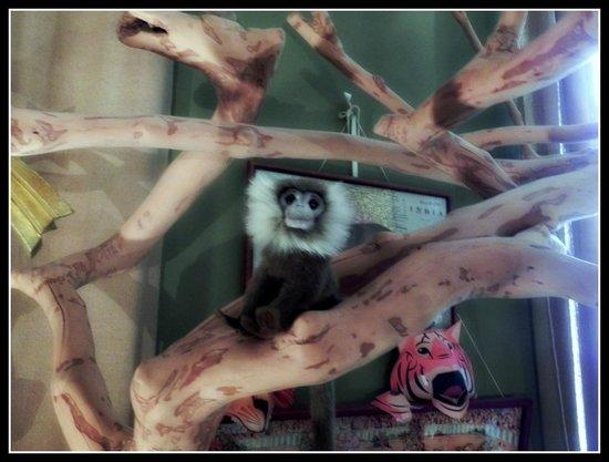 Chambre d'Autres et Suite du Merle Blanc: Alex's monkey