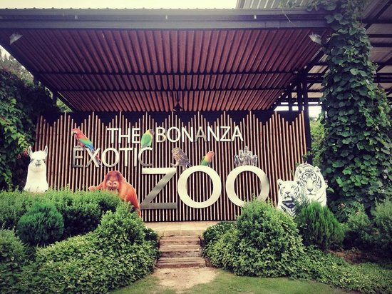 The Bonanza Exotic Zoo