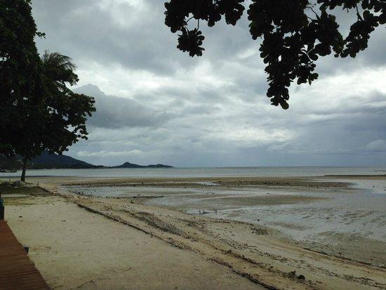 X2 Koh Samui Resort - All Spa Inclusive: dark coarse sand beach