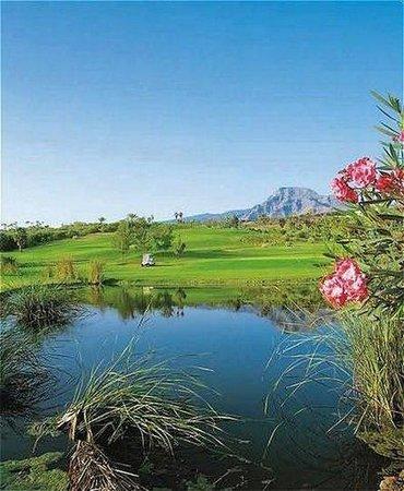 Hotel Las Madrigueras Golf Resort & Spa: Golf court view