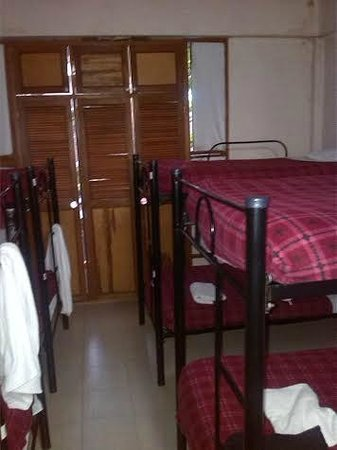 Lleras Park Hostal: Tropical Dorm 10 Beds