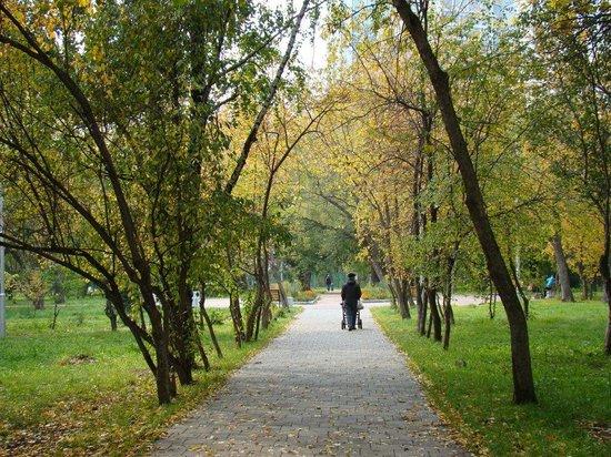 Pavlik Morozov's Garden
