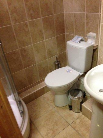 Abbington House B&B: bathroom