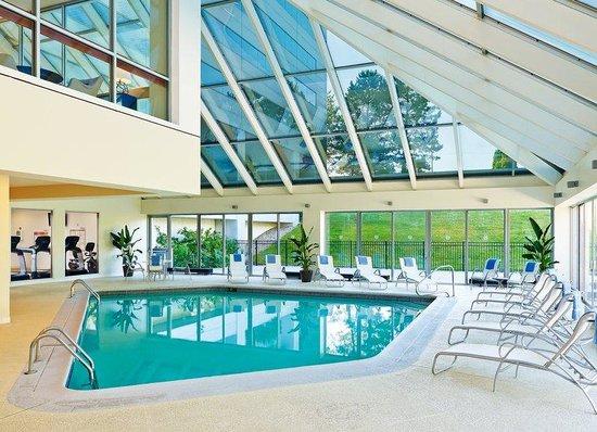 Sheraton Detroit Novi: Indoor Pool