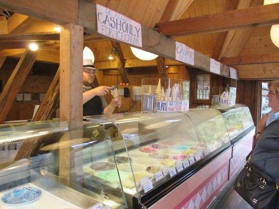 Coombs Ice Cream Parlour: Ice Cream Counter