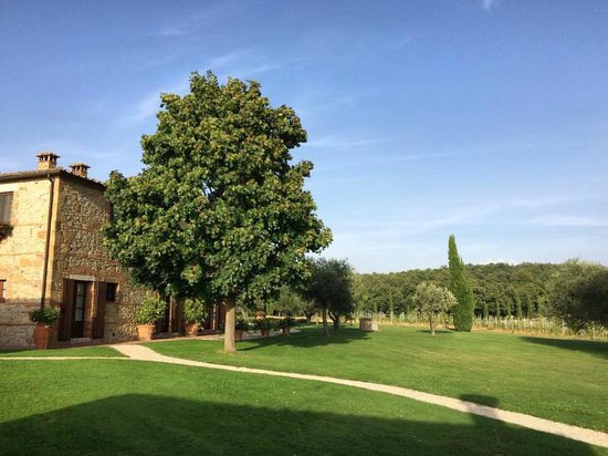 Podere Dionora: Inn and grounds