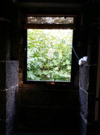 Convento de Sao Francisco: bathroom